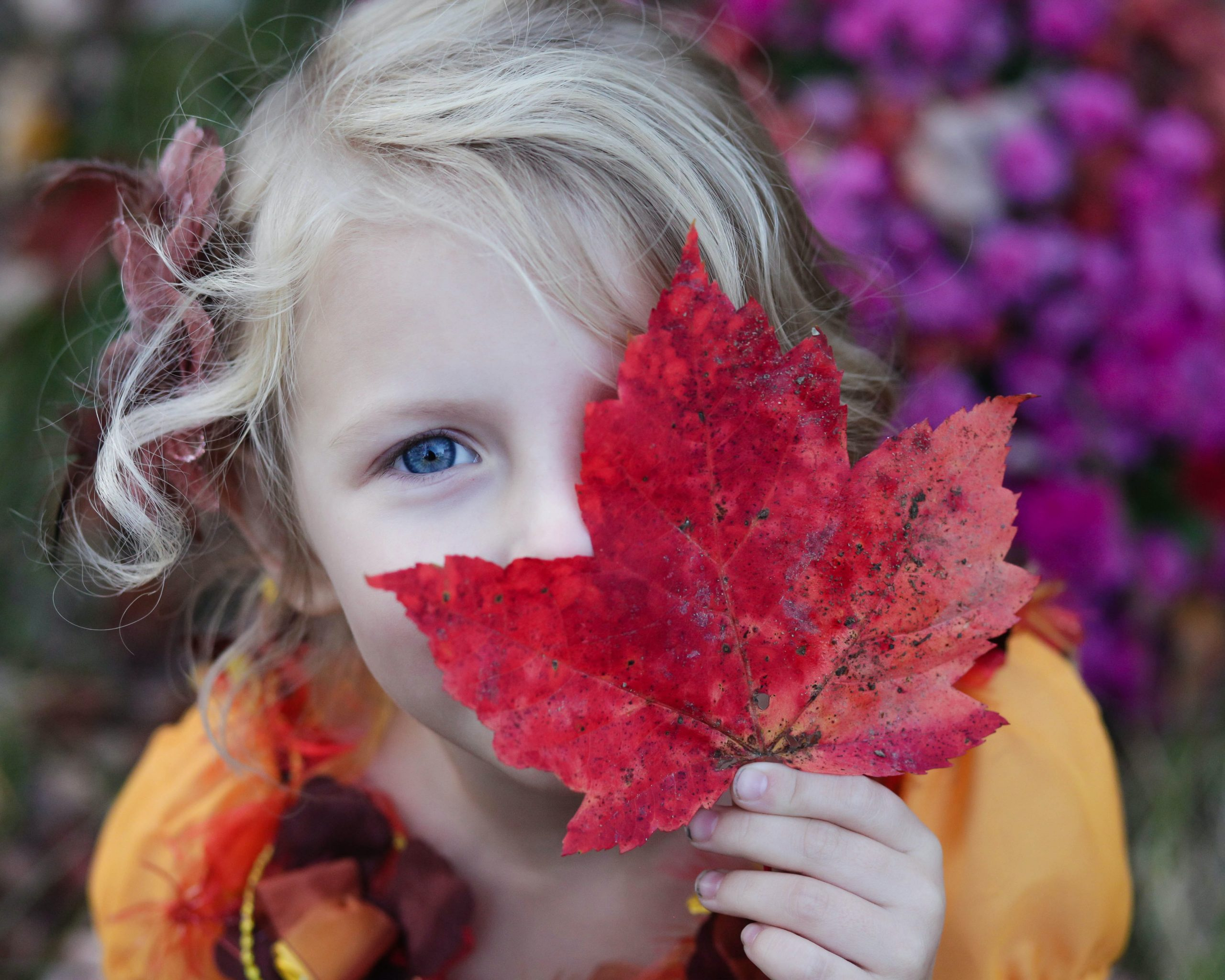 Top Fall Activities for Toddlers in Houston